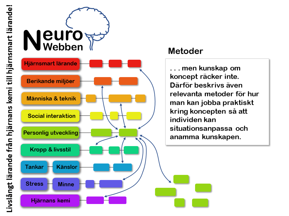 NeuroWebben info (8)