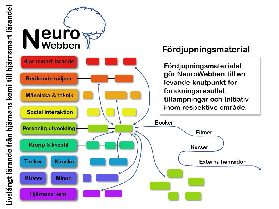NeuroWebben info (9)