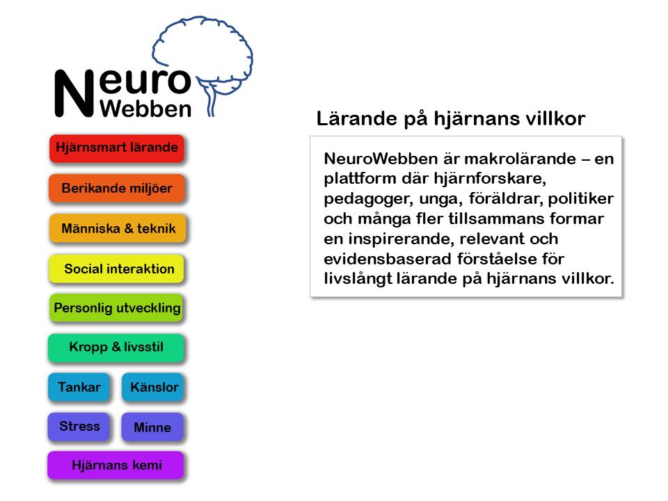NeuroWebben info (1)