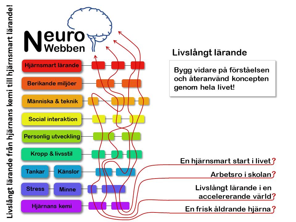 NeuroWebben info (10)