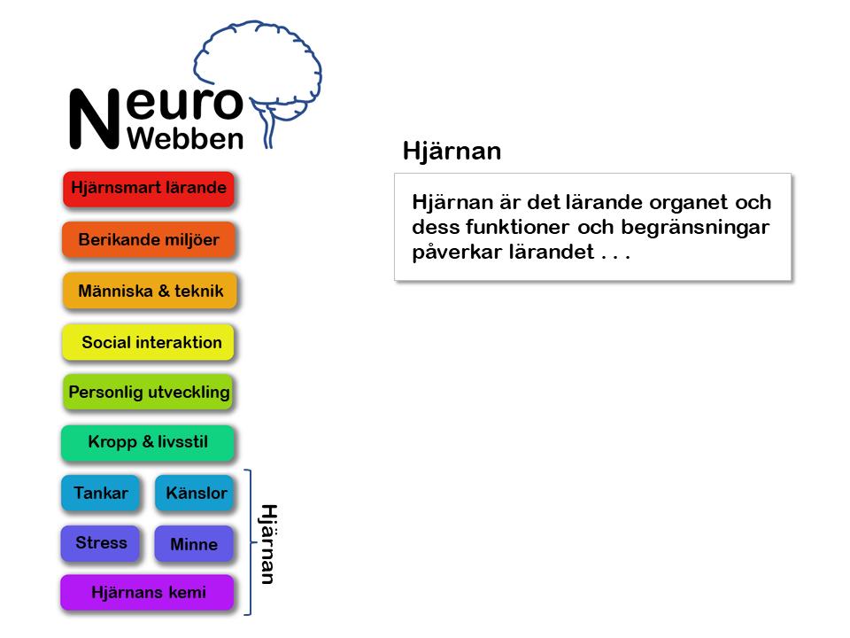 NeuroWebben info (2)