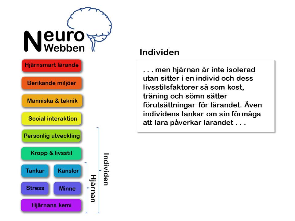 NeuroWebben info (3)