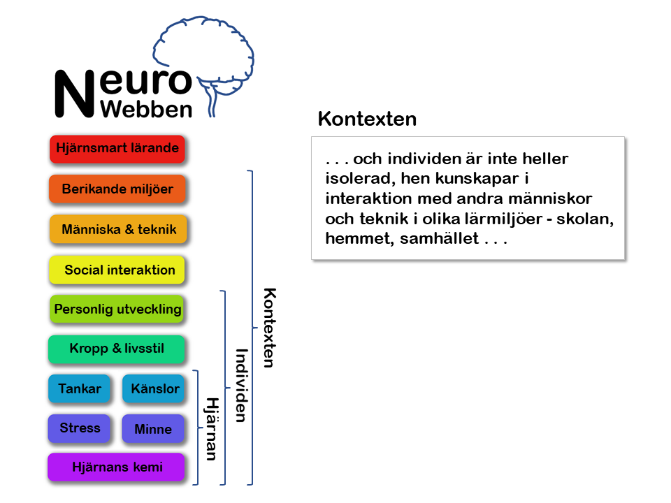 NeuroWebben info (4)