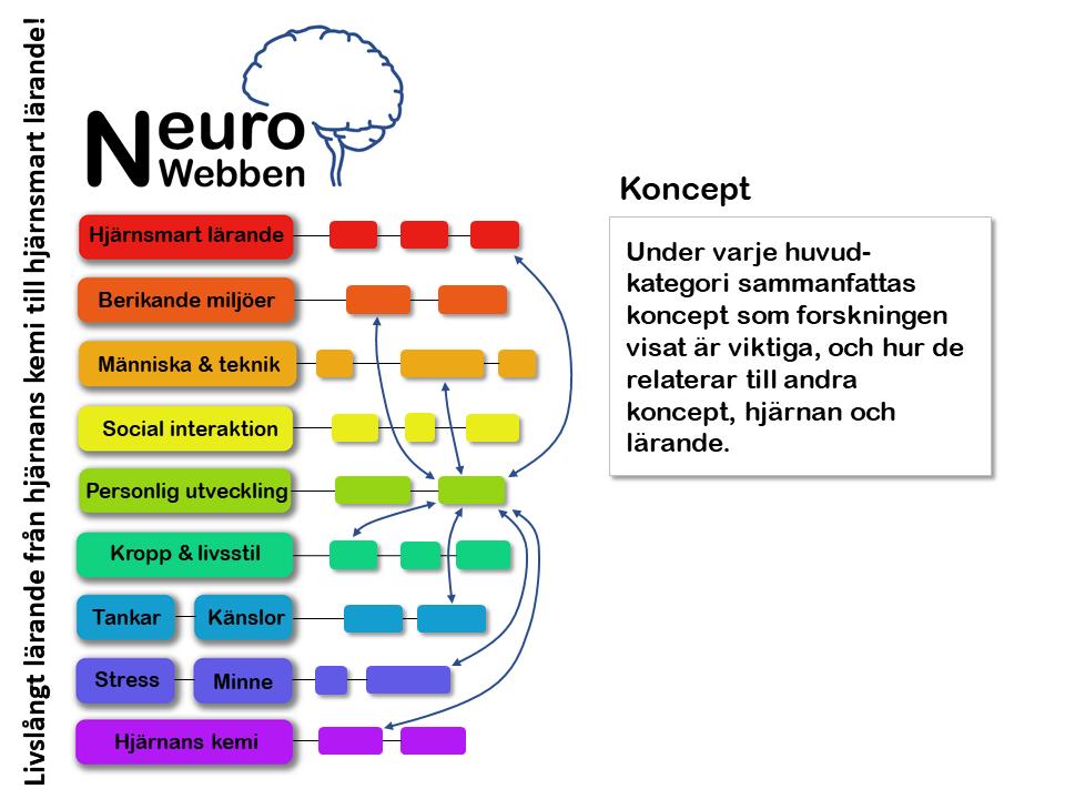 NeuroWebben info (7)
